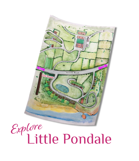 Little Pondale Map